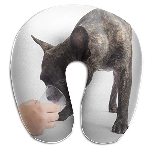 FULIHUA French Bulldogs Drinks A Water of A Glass. On White Background U-Shaped Neck Pillow for Flight, Train, Car, Office Naps and People with Cervical -