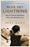 Blue Sky Lightning: How To Survive And Thrive When Life Blindsides You