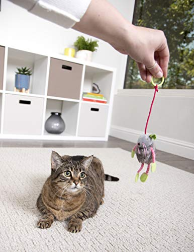 SmartyKat Interactive and Wand Cat Toys 7