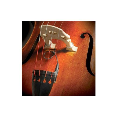 (The Realist RLSTSWB1Orchestral Bass Transducer w/ Wood Element)