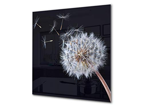 - Toughened glass backsplash - Art glass design printed glass splashback BS 04 Dandelion and flowers series: Black Dandelion
