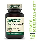 Process Trace Minerals Review and Comparison