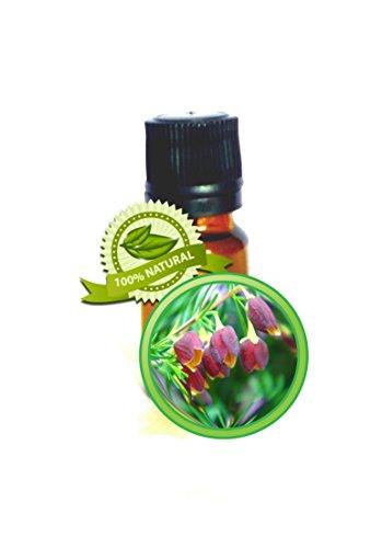 Boronia Absolute Oil - 100% PURE Boronia Megastigma - 5ml (1/6oz)