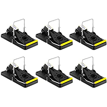 best mouse trap mouse traps quick kill that work best for small mice mouse. Black Bedroom Furniture Sets. Home Design Ideas
