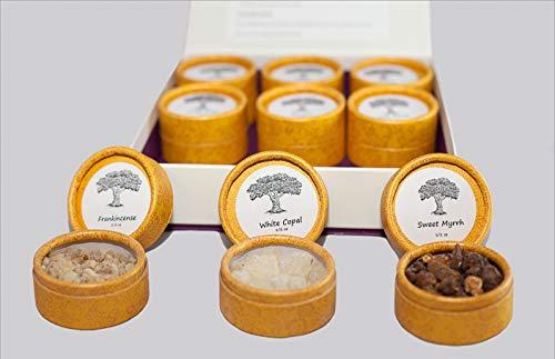 sacred scents for you Resin Incense Variety Sampler Pack/Gift Set,1/2 oz Frankincense-Myrrh-Sweet Myrrh-Copal-White Copal-Benzoin-1/4 oz Dragon's Blood, Palo Santo-1/4 oz Ground White Sage from