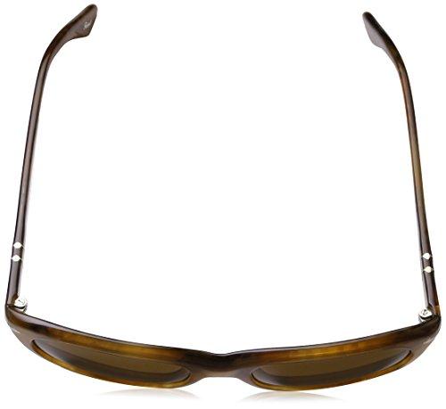 Persol de Caramelo Mod sol SUN96 0649 Gafas 83 rTzqFxr