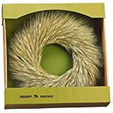 17 Inch Preserved Wheat Wreath