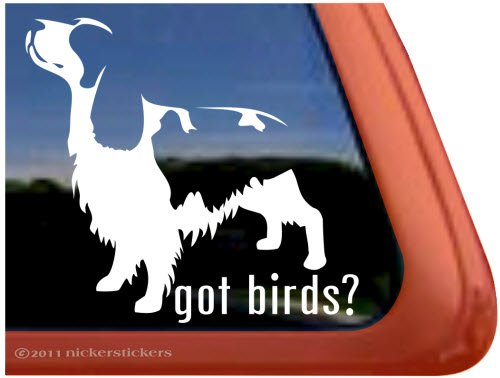 Got Birds? ~ English Springer Spaniel Dog Vinyl Window Decal