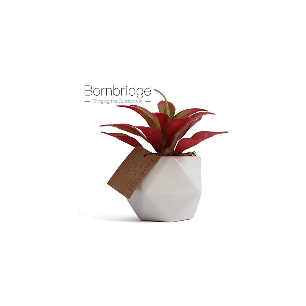 Bornbridge-Artificial-Succulent-Fake-Succulent-in-Planter-Faux-Succulent-with-Ceramic-Geometric-Planter-Artificial-Potted-Plant