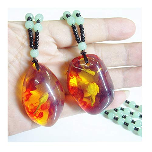 (URUHR Amber Fossil with Plants Samples Stones Crystal Specimens Pendant Necklace (Random)