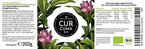 Bio Curcuma und Piperin Kapseln