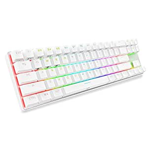 DREVO Calibur 71-Key RGB LED Backlit Wireless Bluetooth 4.0 / USB Wired Gaming Mechanical Keyboard Red Switch-Sliver White