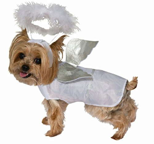 Pop Sensation Dog Costumes (Novel Angel Pet Dog Cat Costume Size Small)