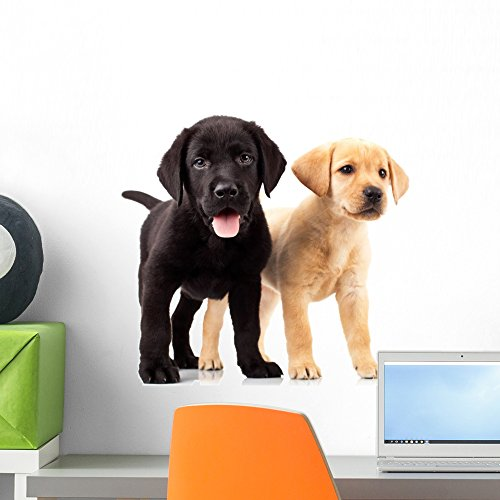Wallmonkeys Two Cute Labrador Puppies Wall Decal Peel and Stick Graphic (18 in H x 18 in W) WM163222