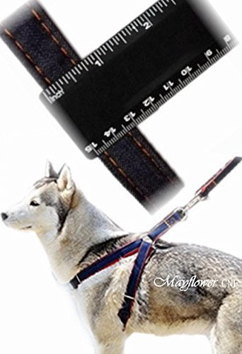 Mayflower-CNF-Pets-No-pull-Adjustable-Size-Oxford-Fabric-Harness-Leash-Set-M-Size-It-could-be-Adjustable-to-Small-or-Large-and-Fits-Most-Dogs