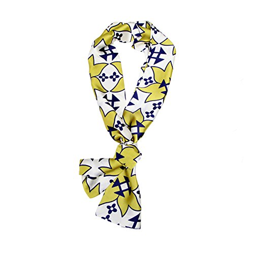 Faurn Silk Head Neck Hair Waist Bag Scarf Wrap, Long Floral Paisley Geometric Printed Ethnic Satin Bandana (Paisley Silk Belt)