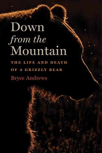 Down from the Mountain by Bryce Andrews