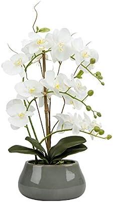 Large Lifelike Silk Orchid With Decorative Ceramic Vase Vivid Artificial Flower Arrangement Potted Orchid Plant White Artificial Flowers Amazon Com Au
