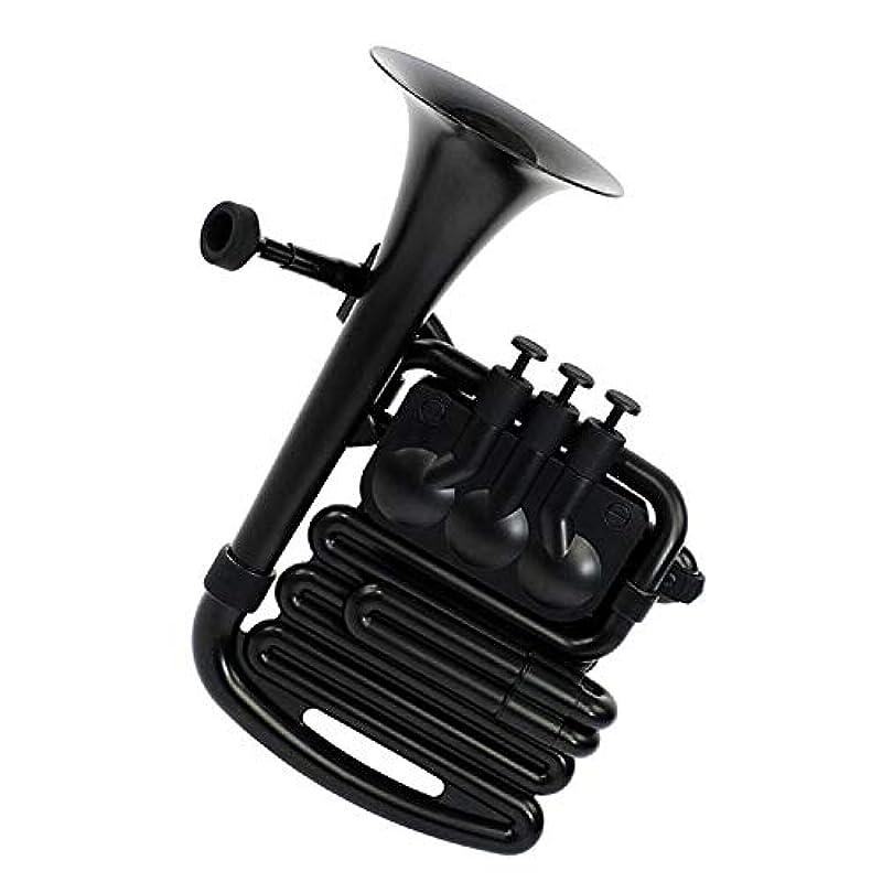 NUVO 플라스틱 관악기 올방수 Bb조 / C조 N610JH (4색상)