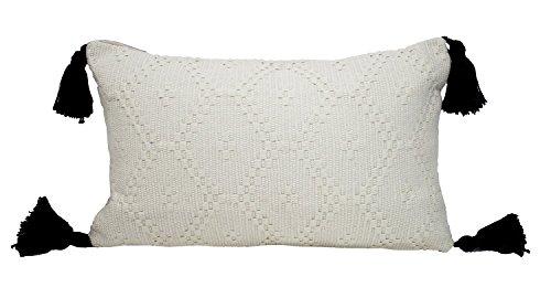 (Fennco Styles New Ivory Boho Tribal Textured Tassels Throw Pillow (Case+Insert, Tassels Ivory Pillow 12