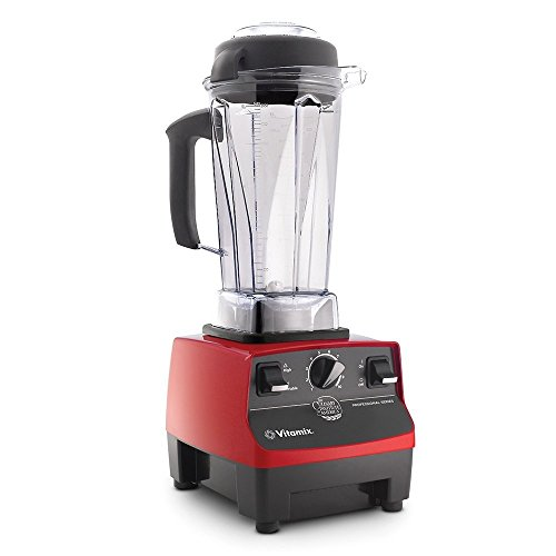 vitamix 300 series - 2