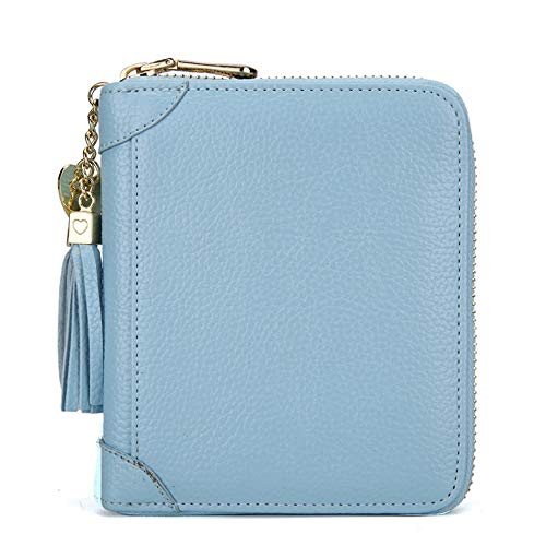 Anna Gift's 40 Pocket Business Card Holder,PU Leather Name Card Holder Page,RFID Blocking Leather Credit Card Holder Card Wallets for Men & Women(Blue) (Old Navy Visa Credit Card Customer Service Number)