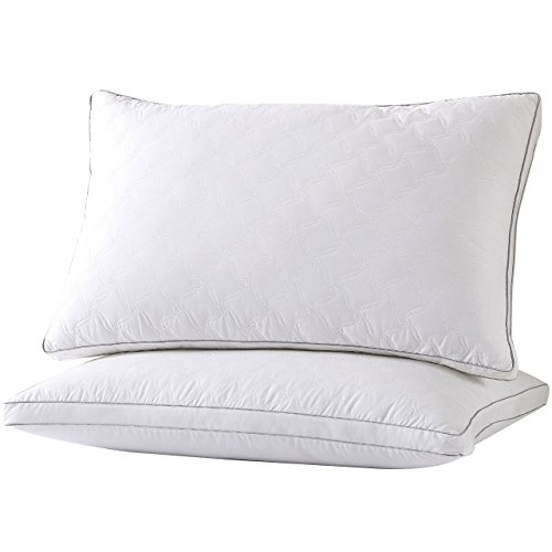 Silk Road Bamboo (GT ROAD Silk Cotton Bed Pillow, Dust and Mite Repellent Velvet Feather Filler with Diamond Stitch Patterns Bed Pillows for Sleeping, Queen ( 2 Pack))
