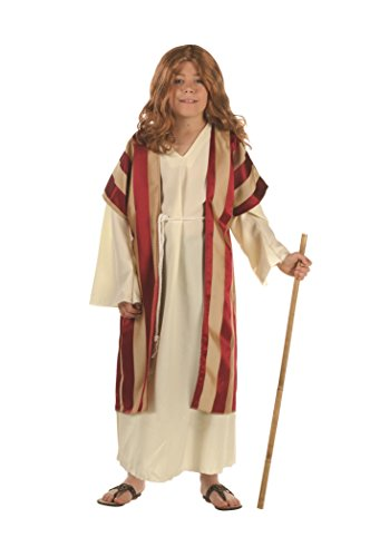 RG Costumes 90284-S Deluxe Moses Costume - Size Child Small 4-6 -