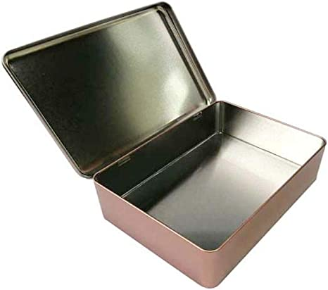 Dabaoliangfen Gran Caja de Lata de Almacenamiento con bisagras Caja de Almacenamiento de Metal Liso Caja de Almacenamiento de Dulces para Galletas caseras @ Champagne Gold: Amazon.es: Hogar