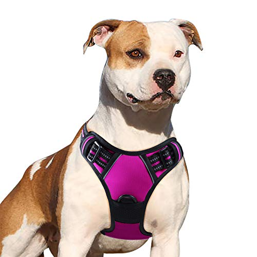 Eagloo Dog Harness No Pull, Walking Pet Harness with 2 Metal Rings & Handle Adjustable Reflective Breathable Oxford Soft Padded Easy Control Front Clip Vest Harness Outdoor for Small Dogs Rose Red