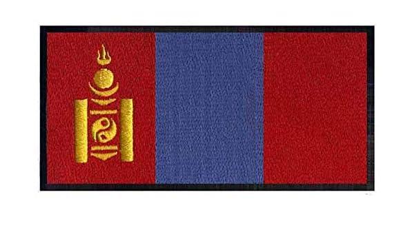 ASTONISH Mongolia - Parche Bordado con Logotipo de la Bandera de Hierro en 3 y quot; una Amplia/Cuentas Aplique/Barcelona Camiseta/Moto: Amazon.es: Hogar