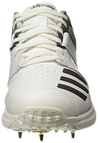 Vector White Adipower Scarpe adidas da SS18 Adipower adidas Cricket tqg88Zp