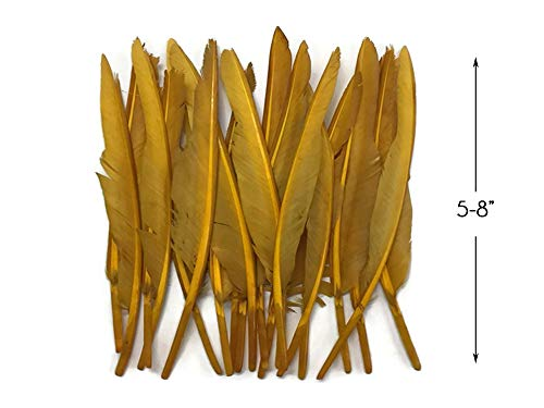 1 Pack - Dyed Antique Gold Duck Primary Wing Pointer Feathers 0.50 Oz. Craft Halloween Costume Carnival Supply | Moonlight Feather ()