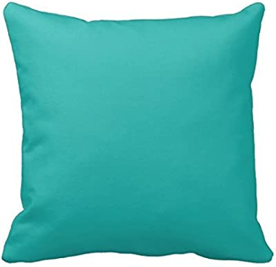 Amazon.com: My Honey Pillow Case Peter Pan Throw Pillow Cover By ...