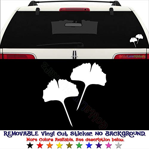 - GottaLoveStickerz Ginkgo Biloba Leaf Health Removable Vinyl Decal Sticker for Laptop Tablet Helmet Windows Wall Decor Car Truck Motorcycle - Size (20 Inch / 50 cm Tall) - Color (Matte White)