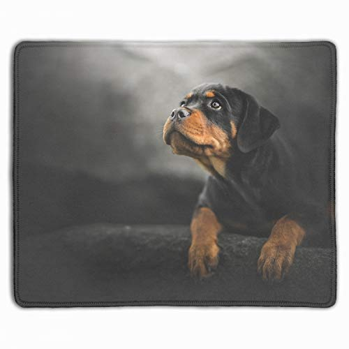 Gaming Mouse Pad Mat, Stitched Edges, Waterproof, Thick 3mm, 11.8-inch by 9.85-inch, Multicolor (Animal Rottweiler Dogs Puppy Baby Dog)