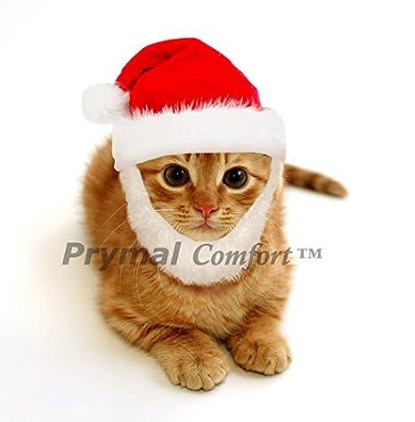 Amazon.com: prymal Santa Dog Cat Costume. Este Pet Costume ...