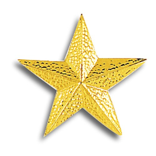 Set of 50 Lapel Pins - Gold Star Pins by Jones School Supply Co., Inc.