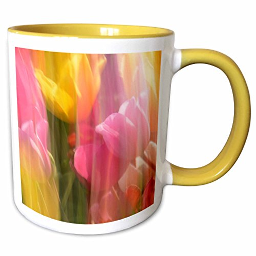 3dRose Danita Delimont - Michel Hersen - Abstracts - Motion-blurred tulips at Tulip Festival in Woodburn, Oregon, USA - 11oz Two-Tone Yellow Mug - Outlet Woodburn Oregon