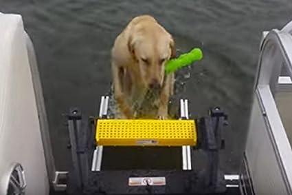Amazon com : WaterDog Adventure Gear Wag Boarding Steps for