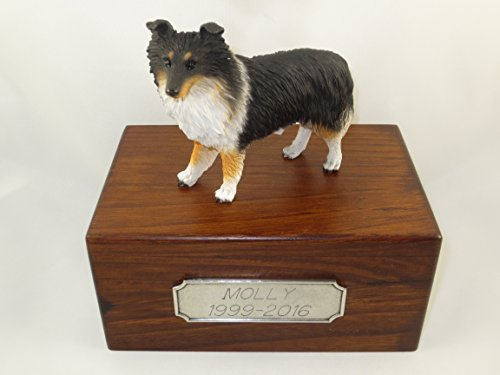 Beautiful Paulownia Small Wooden Urn with Tricolor Sheltie Figurine & Personalized Pewter (Sheltie Porcelain)