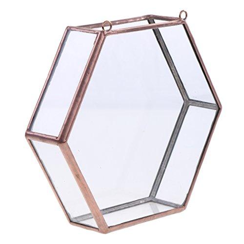 - Dovewill Modern Glass Hanging Geometric Terrarium Hexagon Succulent Planter 15.5x4.5x14cm - copper