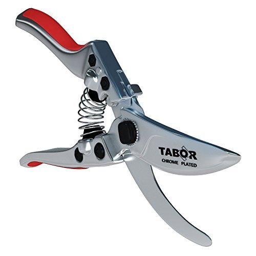 Cheap  Tabor Tools Professional Pruning Shears, Chrome Plated Bypass Secateurs for Cutting Flowers,..