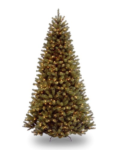 National Tree 7.5 Foot North Valley Spruce Tree with 550 Dual Color LED Lights and On/Off Switch, Hinged - Pre Lit Color Led