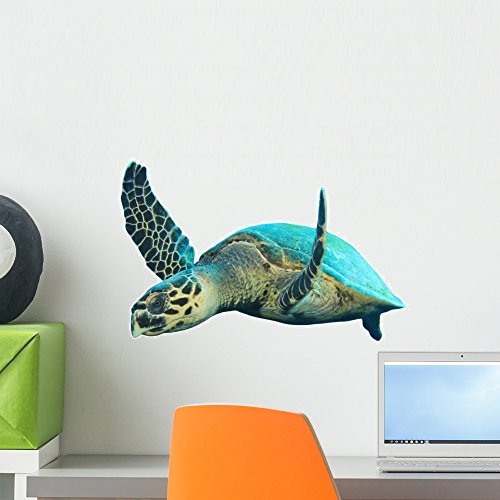 Wallmonkeys Hawksbill Sea Turtles Wall Decal Peel and Stick Graphic WM28080 (18 in H x 18 in W)