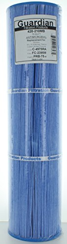 Guardian Pool Spa Filter Replaces FITS C-4975, C4975, PRB75, FC-2395 Rainbow RTL-75 Antimicrobial