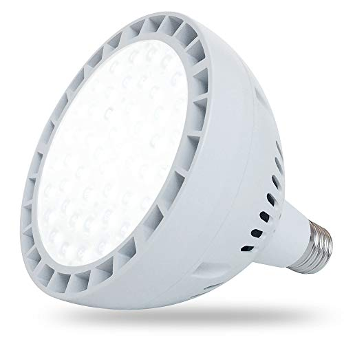 65W LED Pool Light for Inground Swimming Pool, 120V 6500LM Daylight Swimming Pool LED Light Bulb Replacement for 300-1000W Traditional Bulb, Fit in for Pentair and Hayward Pool Light Fixtures (Pool Light Replacement)