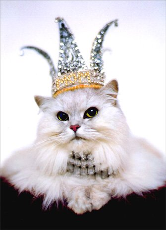 Cat in Crown & Jewels Mother's Day Card (Costume Stores In Md)
