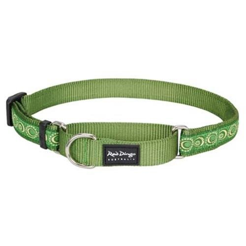 Red Dingo Cosmos Green Medium Martingale Collar