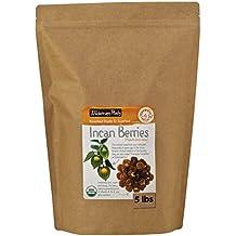 Wilderness Poets Organic Raw Incan Berries (Goldenberries) - Bulk Dried Incan Berries - 10 lb (160 oz)